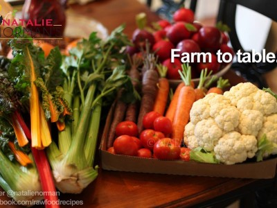 raw food farm to table