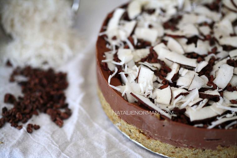 Natalie Norman's Raw Vegan Mocha Ice Cream Mud Pie