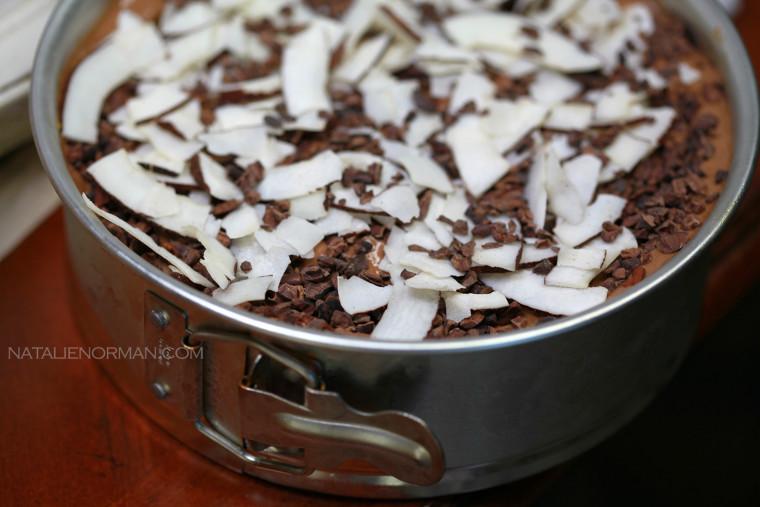 Natalie Norman's Raw Vegan Mocha Ice Cream Mud Pie in Springform Pan